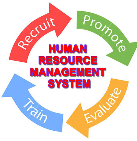 human resource function essay Chapter 1 introduction to human resource management chapter objectives after reading this chapter, you should be.